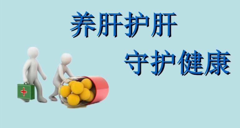 护肝片的功效与作用及禁忌说明书