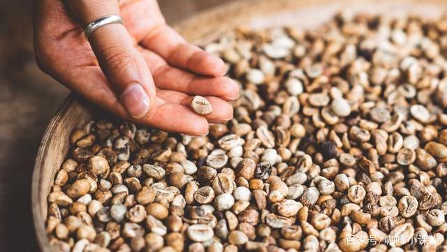 云南小粒咖啡怎么样?云南小粒咖啡品质口感介绍